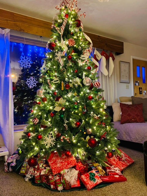 More Gorgeous Christmas Trees Jeanette Lewis